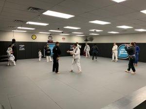 best-jiu-jitsu-instructors